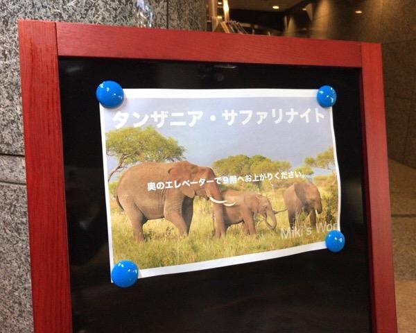 「タンザニア・サファリナイトin神楽坂」参加して来ました!サファリツアーを考えているなら、このイベントでサファリ体験の真実を知ろう。