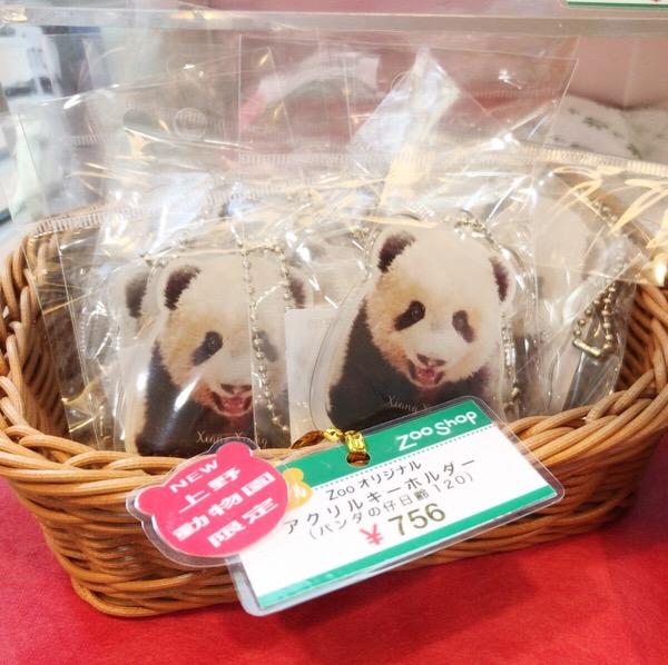 上野動物園公式グッズシャンシャン
