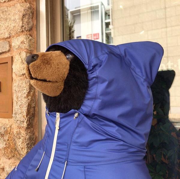 モンベル熊とパンダのリーリーは似てるかな!?