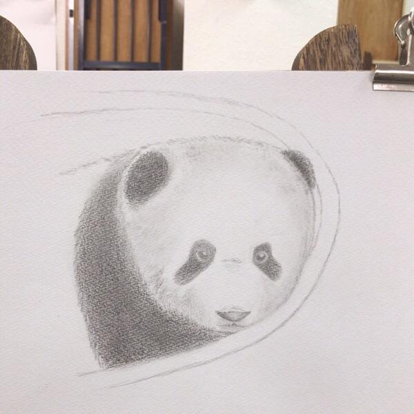 自主練のあと、絵画教室で改善ポイント教えてもらった。【鉛筆デッサン】22/100blogs