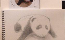 小さめサイズでたくさん描いて、どんどんレッスンを受けよう。【鉛筆デッサン】23/100blogs