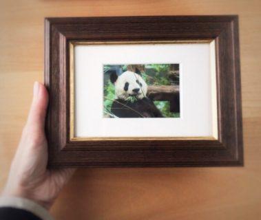 本日搬入。ギャラリーNadarの名刺判写真展に参加します。29/100blogs