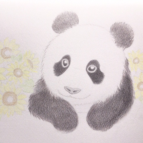シンシンは、向日葵みたいに明るく華やかな女の子。【まいにち色鉛筆10/May/2019】5/100blogs